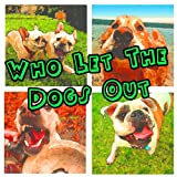 Who Let The Dogs Out (Baha Men Salute)